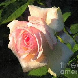 RC DeWinter - Tapestry Rose