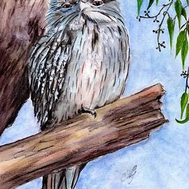 Anne Gardner - Tawny frogmouth