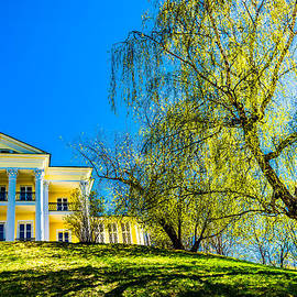 Alexander Senin - Tea House