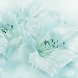 Jennie Marie Schell - Teal Green Azalea Flowers