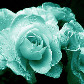 Jennie Marie Schell - Teal Roses with Raindrops