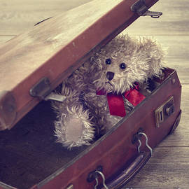 Christopher and Amanda Elwell - Teddy Bear In Suitcase
