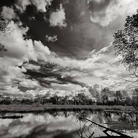 Robert Woodward - Teichert Ponds Pond #3