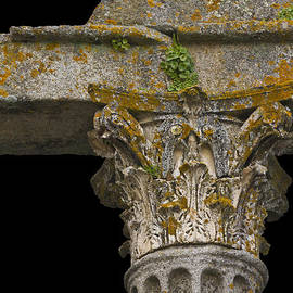 Heiko Koehrer-Wagner - Temple Ruin Fragment