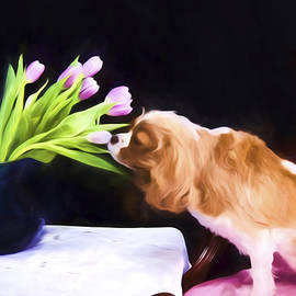 Daphne Sampson - Tender Moment Bwteen Cavalier king Charles And Tulips