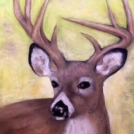 Annamarie Sidella-Felts - Tennessee Wild Life - Buck