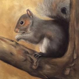 Annamarie Sidella-Felts - Tennessee Wildlife - Gray Squirrels