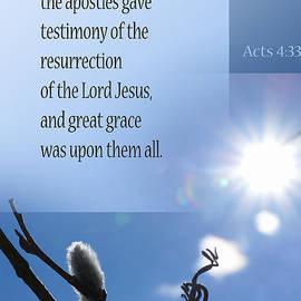 Robin Clifton - Testimony of Resurrection