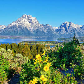 Greg Norrell - Teton Spring from Signal Mtn Summit