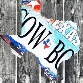 Bill Cannon - Texas License Plate Map