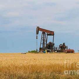 Ashley M Conger - Texas Oil
