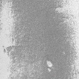 Fei A - Texture No. 319 B W