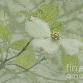 Arlene Carmel - Textured Floret