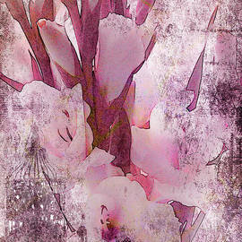 Sandra Foster - Textured Pink Gladiolas