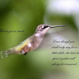 Travis Truelove - Thank you so much card - hummingbird