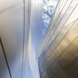 Angela A Stanton - The Abstract Curves of the Disney Concert Hall