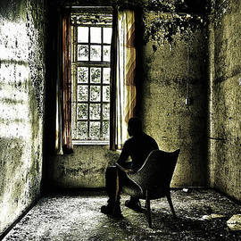 Erik Brede - The Asylum Project - A Room with a View
