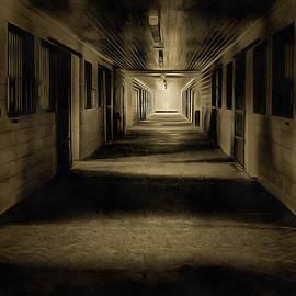 CarolLMiller Photography - The Barn Aisle