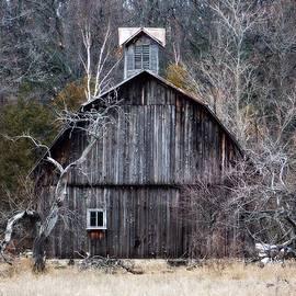 Belinda Olivastri - The Barn