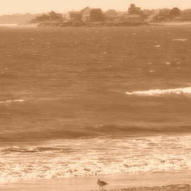 Anastasia Konn - The Beach at the West Wall in Sepia