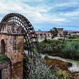 Angela Seager - The beautiful Waterwheel and fauna in Cordoba Andalucia Spain