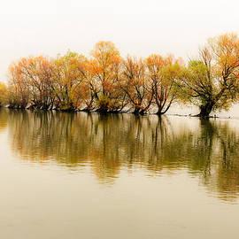 Mahmoud FineArt - The Beauty of Rhein River