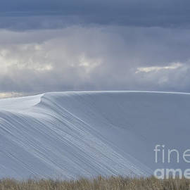 Sandra Bronstein - The Beauty of White Sands National Monument