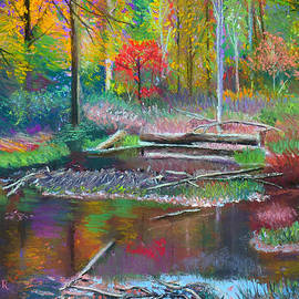 Denise Wagner - The Beaver Dam