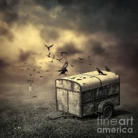 Svetlana Sewell - The Bird Table