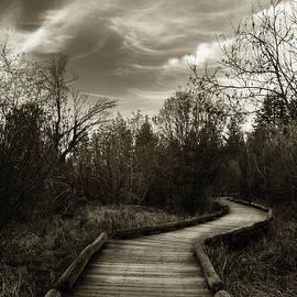 Mitch Shindelbower - The Boardwalk
