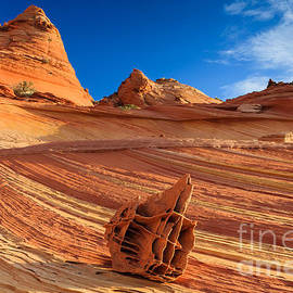 Henk Meijer Photography - The Bone Yard in the North Coyote Buttes