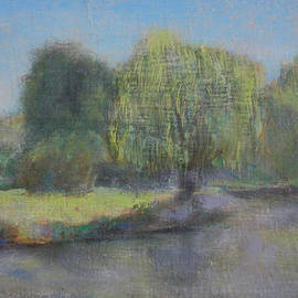 David Zimmerman - The Boston Willow