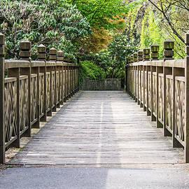 Priya Ghose - The Bridge To Spring