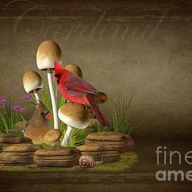 Davandra Cribbie - The Cardinal