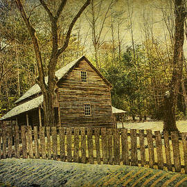 Randall Nyhof - The Carter Shields Cabin in Cades Cove in the Smokey Mountains