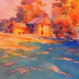 Virgil Carter - The Color of Light