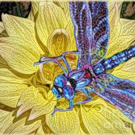 Kimberlee  Baxter - The Complement of a Yellow Dahlia is a Blue Dragonfly
