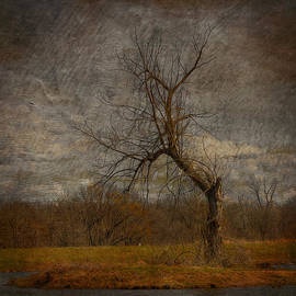 Bill Tiepelman - The Dark Wicked Tree