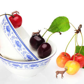 Paul Ge - The deers among cherries and blue-and-white china miniature art