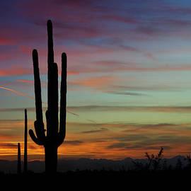 Saija  Lehtonen - The Desert Southwest Skies