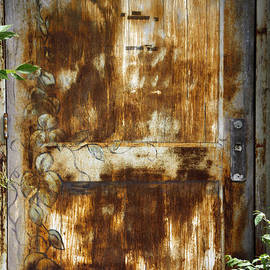 David Simons - The Door