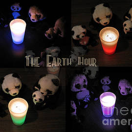 Ausra Paulauskaite - The Earth Hour In The Pandaland