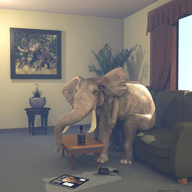 Randall Arthur - The Elephant In The Room