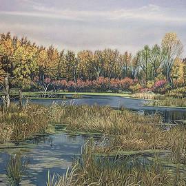 James Welch - The Endangered Wetlands No. 4