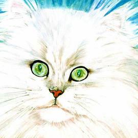 Susan Duda - The Eyes Have It