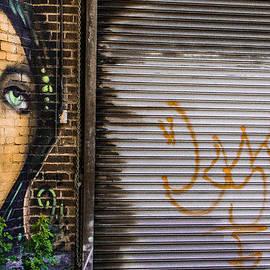 Steven Bateson - The Face Of Graffiti