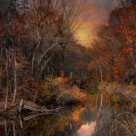 Robin-lee Vieira - The Fading Glow of Fall