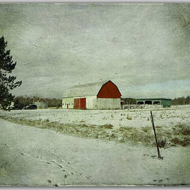 Dianne  Lacourciere - The Farm In Winter
