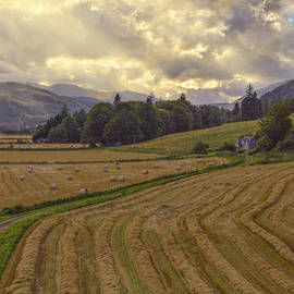 Jason Politte - The Fields of Scotland - Landscape - Sunset