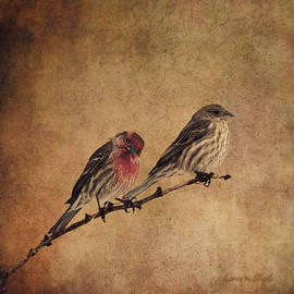 Karen Slagle - The Finches